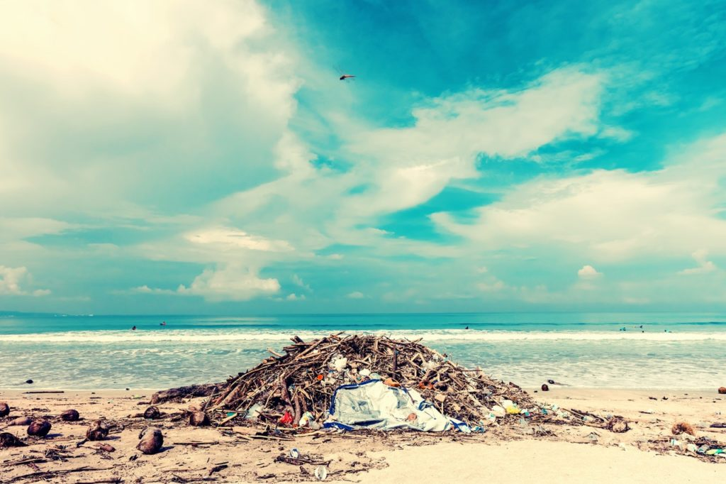 A seashore with different kinds of garbage and debris.