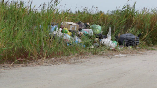 Lots of garbage not properly thrown and placed on the ground surrounded with grass.